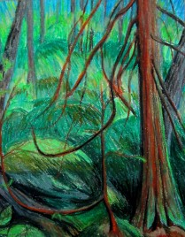 Cedar Tree Study #1, oil pastel, Available for sale.