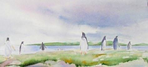Gentoo Penguin Colony, Falkland Islands Watercolour Sold