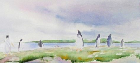 Gentoo Penguin Colony, Falkland Islands Watercolour Sold