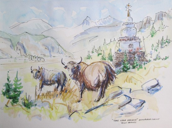 Yaks near Manang, Nepal, Watercolour and Pen sketch. Sold.