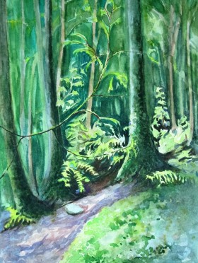 Along The Varley Trail, Lynn Headwaters Park, North Vancouver, BC. Watercolor study.