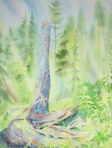 Lightining Strike on Mt. Seymour, North Vancouver, BC. Watercolor