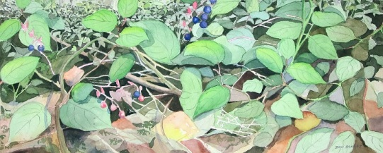 Salal bushes on the Sunshine Coast. Watercolor painting