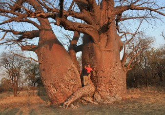 Lyn and I And The Baobab Tree