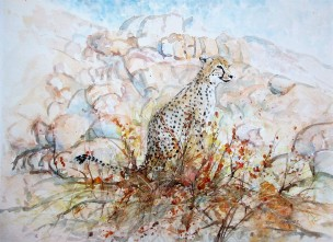This painting was done from photographs of cheetahs at Cheetah Park. I changed the background to reflect its true habitat in Namibia.