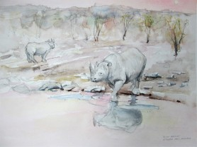 The Rhino's came down to the watering hole just before the sun set. Watercolour wash and pencil